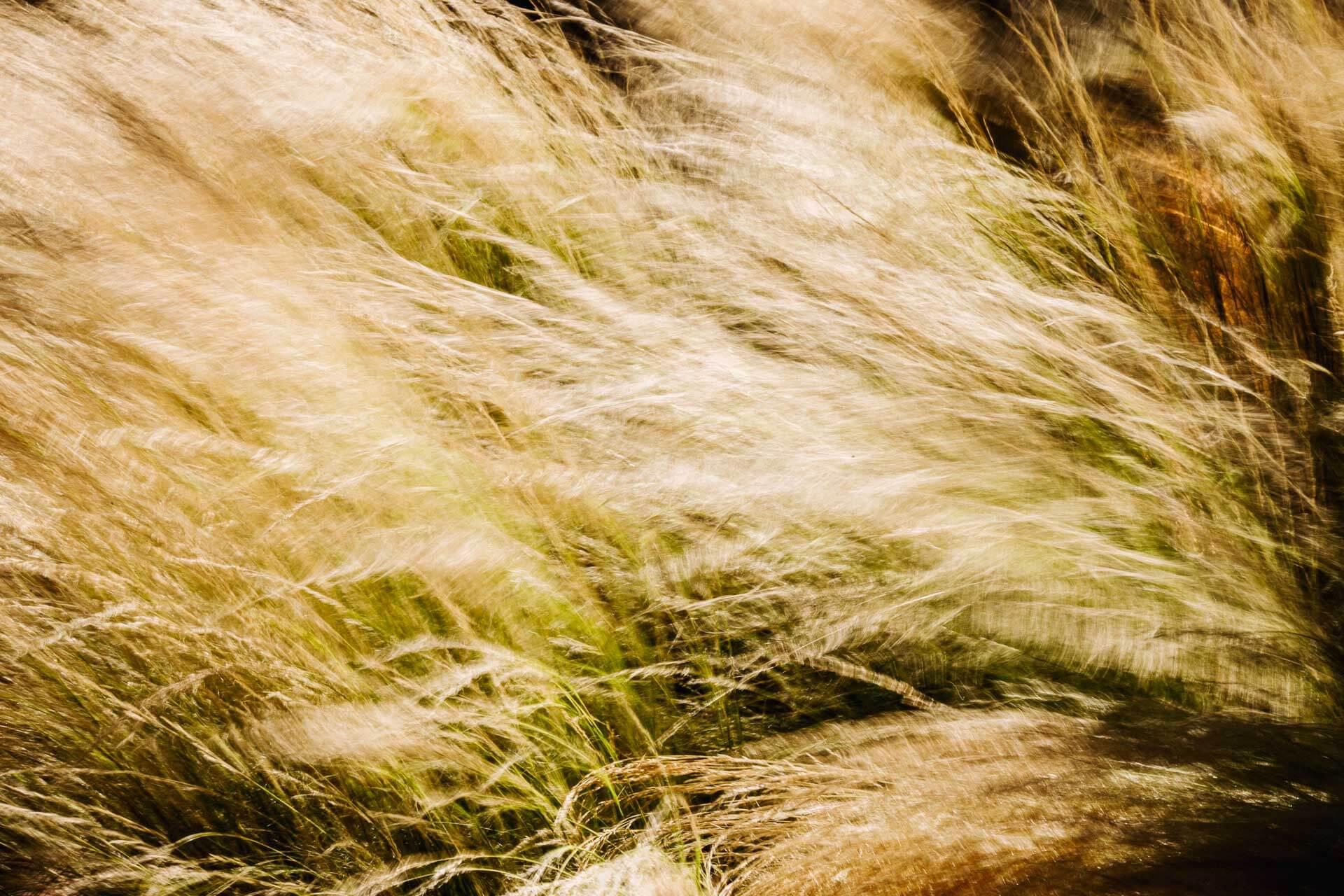 5-clefs-pour-reussir-a-se-lancer-en-tant-que-photographe-professionnel-3